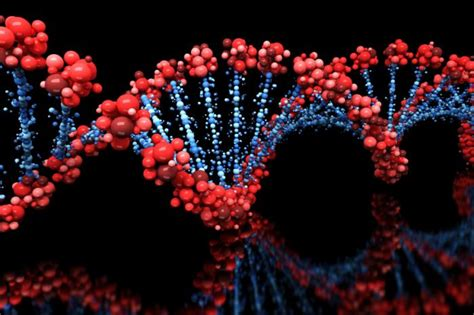 Genes: What are they and why are they important? - Medical